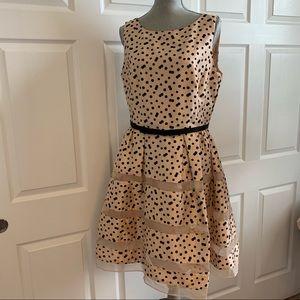 TAYLOR brand 12 tan with polka dress sheer detail